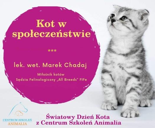 seminarium-kompetencje-kot-w-społeczeństwie-rusori-house-chadaj-hodowla-kotów-seszelskich-colorpoint-orientalnych-syjamskich.png